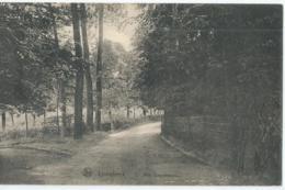 Linkebeek - Rue Dwersbosch - 1912 - Linkebeek