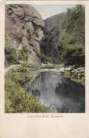 AS89 Lion Face Rock, Dovedale - Local Publisher - Derbyshire