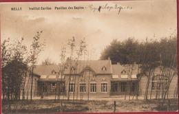 Melle Institut Asile Caritas Gesticht Pavillon Des Sapins 1908 ZELDZAAM - Melle