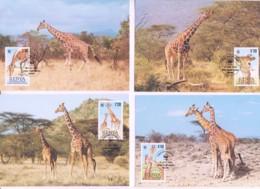 WWF - KENYA - 1989  -  WWF - RETICULATED GIRAFFE  SET  OF 4 MAXI CARDS, - Maximum Cards