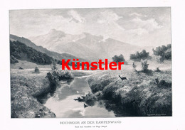 1239 Hugo Bürgel Hochmoor Kampenwand Kunstblatt 1903 !! - Drucke