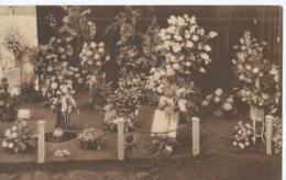 Gent - Gand - Floalies Gantoises 1933 - Gentsche Floraliën 1933 - Edit. Th. De Graeve - 1933 - Gent
