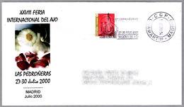 Feria Del AJO DE LAS PEDROÑERAS (Cuenca) - Fair GARLIC Of Pedroñeras. Madrid 2000 - Agricultura