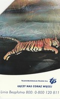 POLONIA. Rapid Jump To Network. TIGRE - TIGER. 25U. 947. (123) - Tarjetas Telefónicas