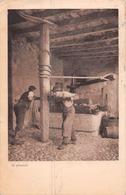 Le Pressoir - S.1. Campagne Romande - Vin - Tampon Du Petit Lancy - Charnaux Genève - Zwitserland