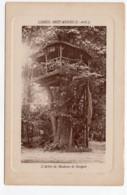Limeil-Brévannes  (Val-de-Marne)  L'arbre De Madame De Sévigné - Limeil Brevannes