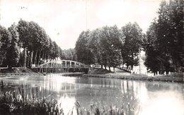 PIE.Z.VI.19-498 : CAUMONT. LE PONT. - France