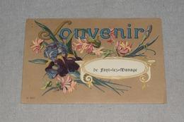 Souvenir De Fayt-lez-Manage Service Militaire Belge Geldem 1920 Fleur - Manage