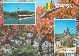 Afrique VUES Du SENEGAL ( Timbre Stamp SENEGAL 100 è Anniversaire Du Congrés Pour Le Rétablissement Des J.0  1894-1994) - Senegal