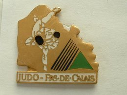 Pin's JUDO PAS DE CALAIS - Judo
