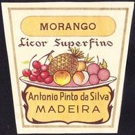 Old Liquor Label, Portugal - Licor Superfino MORANGO / Funchal, Madeira - Size 6,5 X 6,5 Cm - Labels