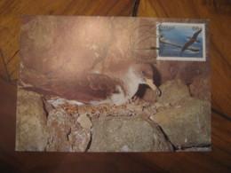 LISBOA 1986 Madeira Europa Cagarra Calonectris Diomedea Borealis Bird Maxi Maximum Card PORTUGAL - Lettres & Documents