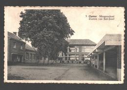 Opitter - Meisjesschool Zusters Van Sint-Jozef - 1953 - Bree