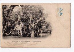 Ph3 - 9 - MAURITIUS - Ile MAURICE  - Kiosque De La Duchesse Dyork - Pamplemousses - Mauritius