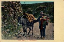 1918 BOLIVIA , TARJETA POSTAL NO CIRCULADA , INDIO LEÑERO - LA PAZ, ESCRITA AL DORSO - Bolivia