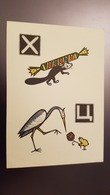 RUSSIA. Russian ABC. Least Weasel  -  1963 Postcard - Candy - Schildpadden