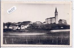 FRONTONAS- VUE GENERALE - France