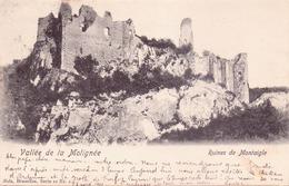 Seltene Alte AK  MONTAIGLE / NAMUR / Belgien  - Burgruine -  Gelaufen 1901 - Belgium
