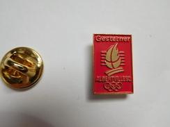 Beau Pin's , JO Jeux Olympiques , Albertville 92 , Gestetner  , Signé COJO 1991 - Jeux Olympiques