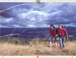 Calendrier Scouts De France _ 1996 - Calendriers