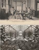 PARIS - VILMORIN-ANDRIEUX - 1 CPA : Etablissement De Verrières, Laboratoire De Biologie + 1 CPSM : Exposition D'horticul - France