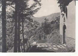 505 - Monte Acuto Delle Alpi - La Vigna - Italia