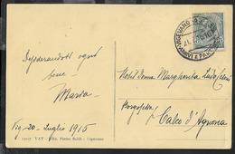 STORIA POSTALE REGNO - ANNULLO FRAZIONARIO DC - VIGEVANO (45-133)/ARRIVI E PARTENZE 21.07.1915 SU CARTOLINA - 1900-44 Vittorio Emanuele III