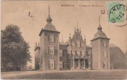 MAESEYCK - Maaseik 1919 - CHATEAU De Roosteren  ( Kaart  Met Plooi. ) - Maaseik