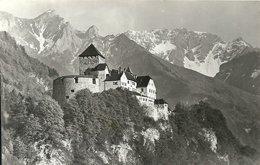 2019 - LIECHTENSTEIN - CPSM PF NB 1939 - VADUZ Le Château - Liechtenstein