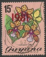 Guyana. 1981 Overprint '1981'. 15c Used. SG 864 - Guyana (1966-...)