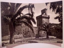 PIOMBINO Il Torrione Rivellino VIAGGIATA 1955 - Italia