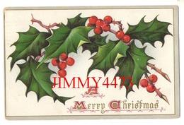 CPA Gaufrée - A MERRY CHRISTMAS En 1910 - Edit. Raphaël Tuck & Sons' - Santa Claus