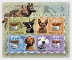 Hongarije / Hungary - Postfris / MNH - Sheet Werkhonden 2019 - Hongarije