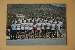 CYCLISME: CYCLISTE : GROUPE PEUGEOT - Cyclisme