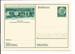 DR P 232/112 ** - 6 Pf Hindenb Med BiPo 'Schweidnitz' Druckprobe - Ganzsachen