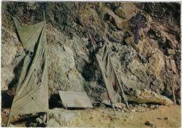 26  Saint Agnan En Vercors  Grotte De La Luire  Du 22 Au 27 Juillet 1944 Destruction De L'hopital Militaire Du Vercors - Francia