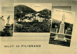 Italie - Italy - Italia - Molise - Isernia - Saluti Da Filignano - Semi Moderne Grand Format - état - Isernia