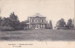 Châtelet Château Des Gaulx D.V.D. 13094 Circulée En 1907 - Châtelet