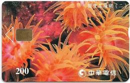 Taiwan - Chunghwa Telecom (Chip) - Coral 2/2 - 200U, Exp. 31.12.2002, Used - Taiwan (Formosa)