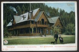 TÁTRA 1905. Barlangliget, Vadászkastély, Régi Képeslap  /  Hunting Castle Vintage Pic. P.card - Hungary