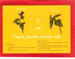 CP Grand Format, Recette De Cuisine, Tisane Plantes Locales Et Miel, Ortie, Menthe, Normandie - Recettes (cuisine)