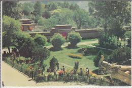 LHASA TIBET - NORBULINGKA, Spring In The Norpu Garden - Tibet