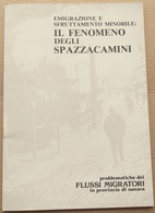 IL FENOMENO DEGLI SPAZZACAMINI (210819) - Historia Biografía, Filosofía