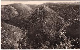 Das Schwarzatal Von Der Teufelstreppe (Thür. Wald) - Saalfeld