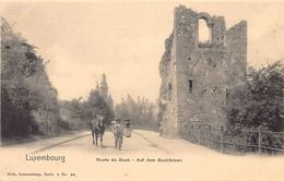 Luxembourg-Ville - Route Du Bock - Ed. Nels - Série 1 N. 40. - Luxembourg - Ville