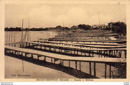 D33  GUJAN MESTRAS  Bassin à Huitres - Gujan-Mestras
