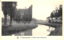 La Nèthe, Près De Westerloo - Westerlo