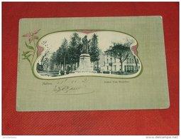 MECHELEN  - MALINES -   Standbeeld Van Beneden    -  1902 - Malines