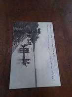 Cartolina Postale 1912, Saluti Da Vallone, Riviera Del Po - Rovigo