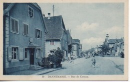 68 DANNEMARIE   Rue De Cernay - Dannemarie